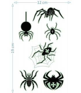 Creepy Spiders