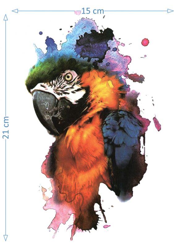 Colorful Parrot