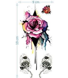 Splash Rose II